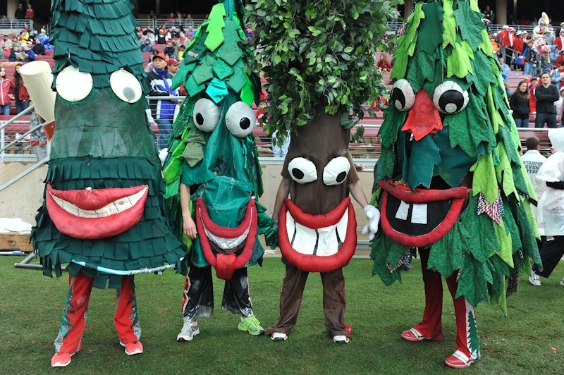 stanford-tree-and-friends